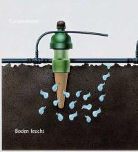 Hochbeet Bewasserung Mit Tropf Blumat Gartenmagazin Von Gartenallerlei